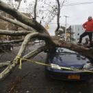 Cum sa-ti inlocuiesti masina in urma unui dezastru natural?