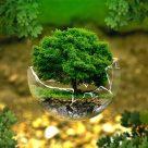 Care sunt efectele deseurilor ne biodegradabile?